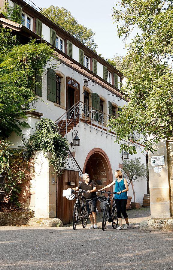 """Das Weingut Schäffer in der Schloßstraße in Hambach ist die charmante Kulisse für die Dreharbeiten zu """"Weingut Wader""""."""