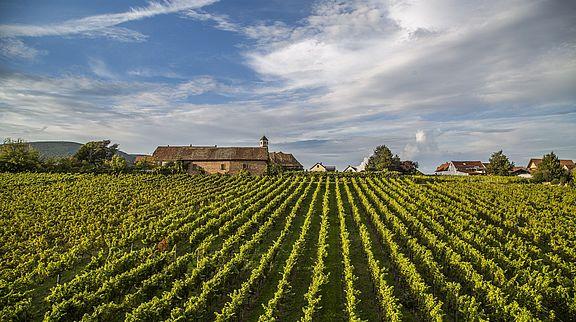 Kloster Heilsbruck Edenkoben ©Thomas Kujat