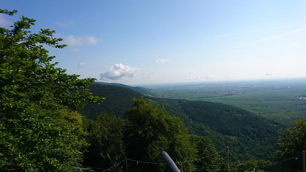 Ausblick von der Rietburg