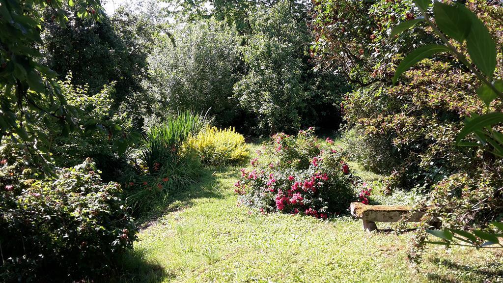 Martinshof Garten