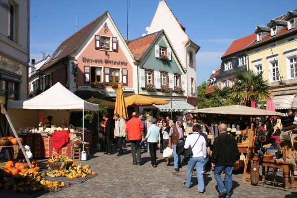Bauernmarkt Römerplatz