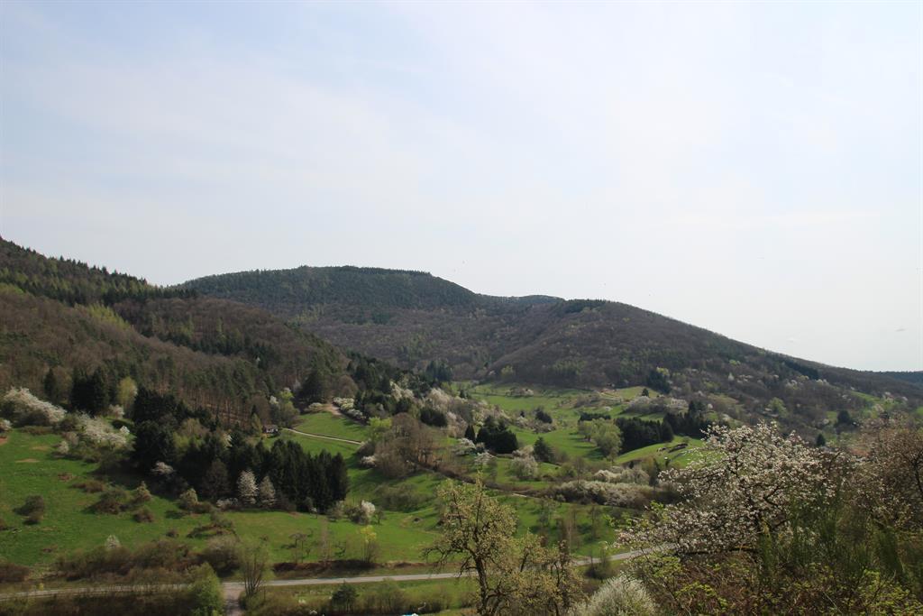 Blick ins Dernbachtal