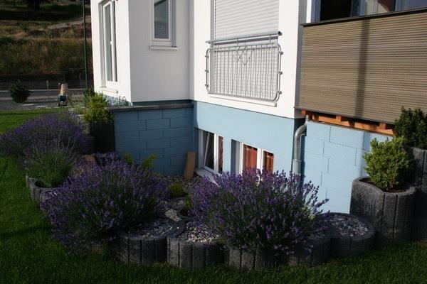 Fenster zum Garten2