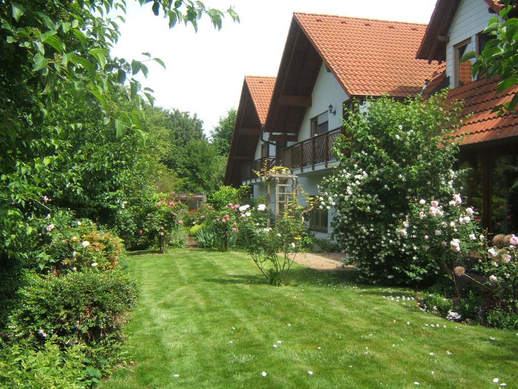 Blick auf Garten und Balkon