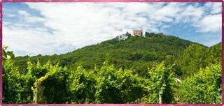 ___ at Hambach Castle ©Rheinland-Pfalz Tourismus G